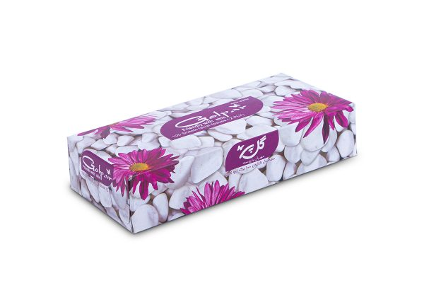 دستمال کاغذی 100 برگ دو لایه آبنوس